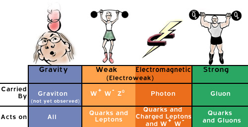 gravitational force an overview Overview through this lesson, students will learn that gravity is a universal force  of attraction between two objects, and that gravity is a force found throughout.